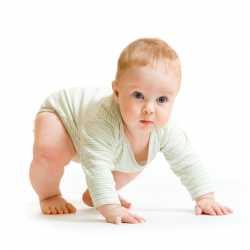 Desarrollo del bebé: bebé de 12 meses