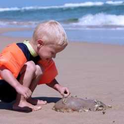 Picaduras de medusas en niños durante las vacaciones