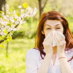Alergias durante el embarazo. ¿Qué hacer?