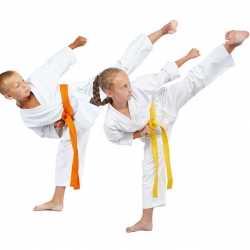 El taekwondo en la infancia