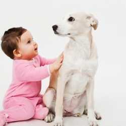 La relación de los niños con las mascotas