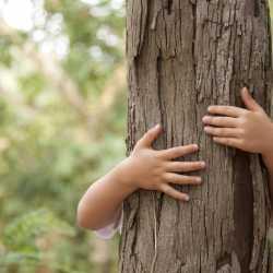 Los niños deben cuidar el medio ambiente