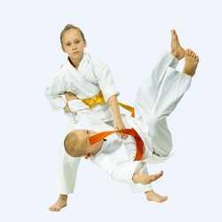 Beneficios del Judo en los niños