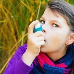 Qué alérgenos pueden causar asma infantil