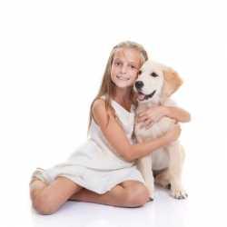 Niños muy sensibles o altamente sensibles