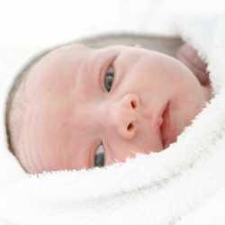 Estrés en bebés prematuros
