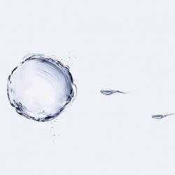 Calidad del esperma: parámetros aconsejables para ser padre
